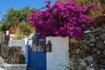 Bij de bronnen van Karavas | Kythira | Foto 7 - Foto van De Griekse Gids