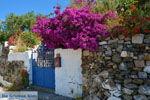 Bij de bronnen van Karavas | Kythira | Foto 8 - Foto van De Griekse Gids