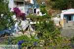 Bij de bronnen van Karavas | Kythira | Foto 14 - Foto van De Griekse Gids