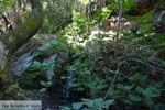 Bij de bronnen van Karavas | Kythira | Foto 19 - Foto van De Griekse Gids