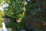 Bij de bronnen van Karavas | Kythira | Foto 30 - Foto van De Griekse Gids
