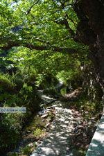 Bij de bronnen van Karavas | Kythira | Foto 31 - Foto van De Griekse Gids