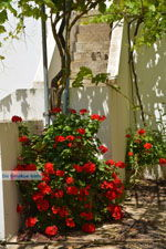 Kalokerines Kythira | Griekenland | Foto 5 - Foto van De Griekse Gids