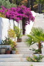 Kapsali Kythira | Griekenland | De Griekse Gids foto 31 - Foto van De Griekse Gids