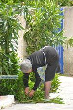 Karvounades Kythira | Griekenland | De Griekse Gids foto 8 - Foto van De Griekse Gids