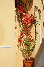 Kythira stad (Chora) | Griekenland | De Griekse Gids 251 - Foto van De Griekse Gids
