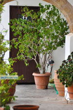 GriechenlandWeb.de Klooster Mirtidia (Mirtidiotissa) | Kythira | Foto 14 - Foto GriechenlandWeb.de