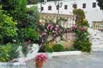 Klooster Mirtidia (Mirtidiotissa)   Kythira   Foto 15 - Foto van De Griekse Gids