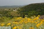 GriechenlandWeb.de Mitata Kythira - Foto GriechenlandWeb.de