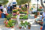 Markt Potamos Kythira | Griekenland | De Griekse Gids foto 4 - Foto van De Griekse Gids