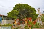Klooster Osios Theodoros Potamos Kythira | Griekenland foto 39 - Foto van De Griekse Gids