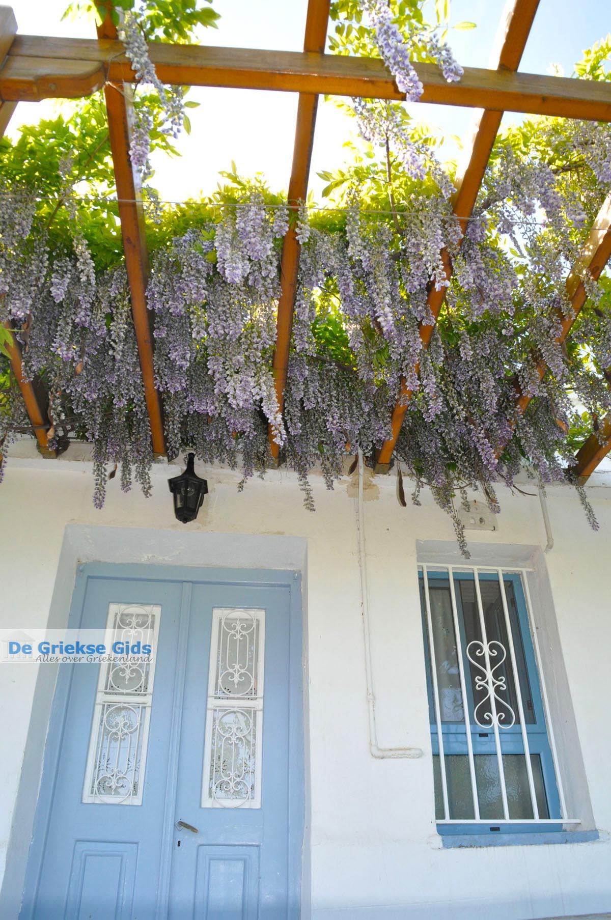 foto Stenies | Eiland Andros | De Griekse Gids foto 23
