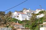 GriechenlandWeb Andros-Stadt (Chora) | GriechenlandWeb.de | Foto 051 - Foto GriechenlandWeb.de