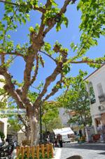 Andros-stad (Chora) | De Griekse Gids | Foto 078 - Foto van De Griekse Gids