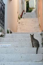 Stenies | Eiland Andros | De Griekse Gids foto 7
