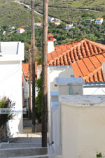 Stenies | Eiland Andros | De Griekse Gids foto 13 - Foto van De Griekse Gids