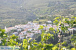 Stenies | Eiland Andros | De Griekse Gids foto 31 - Foto van De Griekse Gids