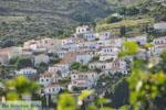 Stenies | Eiland Andros | De Griekse Gids foto 32 - Foto van De Griekse Gids