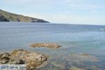 GriechenlandWeb Andros-Stadt (Chora) | GriechenlandWeb.de | Foto 101 - Foto GriechenlandWeb.de