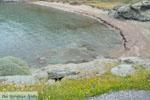 GriechenlandWeb.de Chalkolimnionas | Insel Andros | GriechenlandWeb.de foto 4 - Foto GriechenlandWeb.de