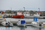 GriechenlandWeb.de Batsi | Insel Andros | GriechenlandWeb.de | Foto 20 - Foto GriechenlandWeb.de