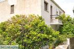 Batsi | Eiland Andros | De Griekse Gids | Foto 40 - Foto van De Griekse Gids