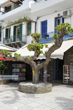 GriechenlandWeb.de Batsi | Insel Andros | GriechenlandWeb.de | Foto 50 - Foto GriechenlandWeb.de