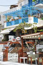 Batsi | Eiland Andros | De Griekse Gids | Foto 52 - Foto van De Griekse Gids
