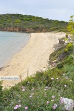 Strand bij Batsi | Eiland Andros | De Griekse Gids | Foto 2 - Foto van De Griekse Gids