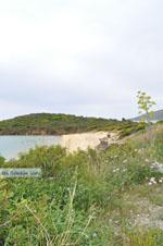 Strand bij Batsi | Eiland Andros | De Griekse Gids | Foto 5 - Foto van De Griekse Gids