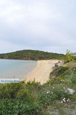 Strand bij Batsi | Eiland Andros | De Griekse Gids | Foto 6 - Foto van De Griekse Gids