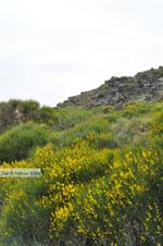 Op weg naar het klooster Panachrantou   Eiland Andros   De Griekse Gids 006 - Foto van De Griekse Gids