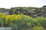 Op weg naar het klooster Panachrantou | Eiland Andros | De Griekse Gids 008 - Foto van De Griekse Gids