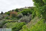 GriechenlandWeb.de Op weg naar het klooster Panachrantou | Insel Andros | GriechenlandWeb.de 010 - Foto GriechenlandWeb.de