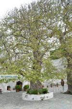 Panachrantou Klooster | Eiland Andros | De Griekse Gids | Foto 18 - Foto van De Griekse Gids
