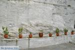 Panachrantou Klooster | Eiland Andros | De Griekse Gids | Foto 22 - Foto van De Griekse Gids