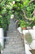 Appartementen Myrtho op eiland Andros | De Griekse Gids foto 4 - Foto van De Griekse Gids