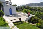 Appartementen Myrtho op eiland Andros | De Griekse Gids foto 13 - Foto van De Griekse Gids