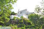 Appartementen Myrtho op eiland Andros | De Griekse Gids foto 14 - Foto van De Griekse Gids