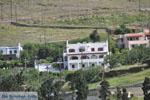 Appartementen Myrtho op eiland Andros | De Griekse Gids foto 25 - Foto van De Griekse Gids