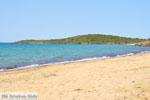 Strand Kypri (Golden Beach) bij Batsi | Eiland Andros | De Griekse Gids foto 001 - Foto van De Griekse Gids