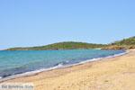 Strand Kypri (Golden Beach) bij Batsi | Eiland Andros | De Griekse Gids foto 003 - Foto van De Griekse Gids