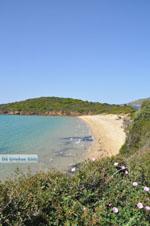 Strand Kypri (Golden Beach) bij Batsi | Eiland Andros | De Griekse Gids foto 008 - Foto van De Griekse Gids