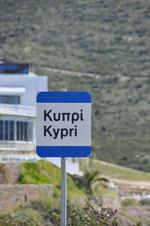 Strand Kypri (Golden Beach) bij Batsi | Eiland Andros | De Griekse Gids foto 009 - Foto van De Griekse Gids