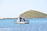 Haven Gavrio | Eiland Andros | De Griekse Gids | Foto 3 - Foto van De Griekse Gids