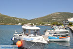 Haven Gavrio | Eiland Andros | De Griekse Gids | Foto 7 - Foto van De Griekse Gids