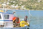 Haven Gavrio | Eiland Andros | De Griekse Gids | Foto 8 - Foto van De Griekse Gids
