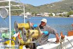 Haven Gavrio | Eiland Andros | De Griekse Gids | Foto 11 - Foto van De Griekse Gids