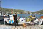 Haven Gavrio | Eiland Andros | De Griekse Gids | Foto 12 - Foto van De Griekse Gids
