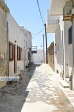 Haven Gavrio | Eiland Andros | De Griekse Gids | Foto 18 - Foto van De Griekse Gids